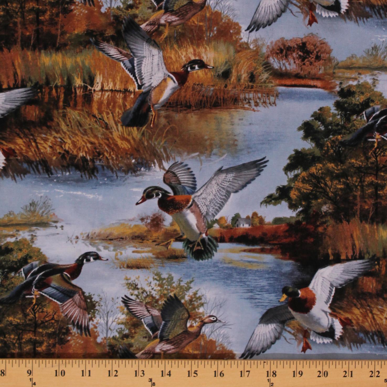 Cotton Silver Lake Ducks Hunting Nature Birds Blue Cotton