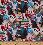 Cotton Holiday Friends Cats Kittens Wearing Hats Bows Christmas Presents Gifts Cotton Fabric Print by the Yard (4203-blue)