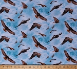 Cotton Red-Tailed Hawks North American Wildlife Birds of Prey Birdwatching Clouds Sky Blue Cotton Fabric Print by the Yard (451-blue)