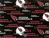 Arizona Cardinals NFL Pro Football Cotton Fabric Print