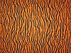 Orange/Black Tiger Skin Fleece Fabric Print by the Yard atigerg