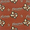 Houston Astros MLB Baseball Sports Team Fleece Fabric Print
