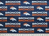 Denver Broncos NFL Pro Football Cotton Fabric Print
