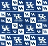 Cotton University of Kentucky UK College Team Cotton Fabric Print (ky-020)