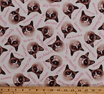 Cotton Grumpy Cat Faces Internet Meme Words Phrases Sayings Cats Kittens Animals on Cream Cotton Fabric Print by the Yard (R11-9722-0126)