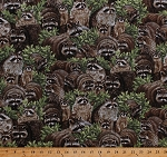 Cotton Raccoons Racoons Coons Wildlife Animals Scenic Nature Backyard Bandits Born Free Cotton Fabric Print by the Yard (112-32021)