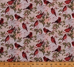 Cotton Christmas Cardinals Birds Holly Berries Leaves Pine Needles Branches Foliage Winter Holidays Good Tidings Christmas Cards Cotton Fabric Print by the Yard (64477-A620715)