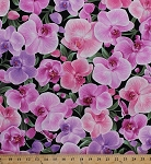 Cotton Orchids Flowers Floral Botanical Blooms Tropical Pink Fabric Print by the Yard (orchid-c3205)