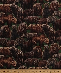 Cotton Living Wonders Brown Bears Grizzlies Grizzly Bear Cubs Animals Green Cotton Fabric Print by the Yard (112-24871)