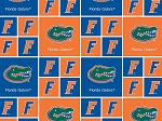 University of Florida™ Gators™ Cotton Fabric Print - sfl020s