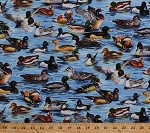 Cotton Ducks Types Mallards Birds Wood Ducks in Water Lake Pond Waterfowl Nature Outdoors Animals Hunting American Wildlife Cotton Fabric Print by the Yard (112-29511)