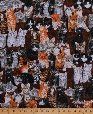 Cotton Kittens Cats Cat Animals Feline Kitties Kitty Pets Counting Kittens Cotton Fabric Print by the Yard (3953-60681-9)