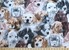 Fleece (not for masks) Puppies Dogs Fleece Fabric Print by the Yard a31771b