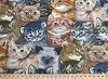 Fleece (not for masks) Kittens Cats Fleece Fabric Print by the Yard a31772b