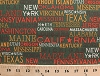 Cotton USA 50 State Names Titles America Patriotic Travel Words Olive Green On the Road Cotton Fabric Print by the Yard (apj-12539-7)