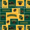 University of Baylor Bears College Fleece Fabric Print