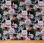 Cotton Cats Kittens Kitty Animals Pets Flowers Pink Roses Ribbons Bows Floral Valentine's Day Kitties Feline Cotton Fabric Print by the Yard (AL-2003-3C)