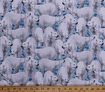 Cotton Polar Bears Bear Arctic Animals Carnivores Marine Mammals Wildlife Nature Snow Ice Winter Northern Lights Cotton Fabric Print by the Yard (1649-24424-B)