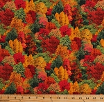 Cotton Autumn Trees Woods Forest Leaves Fall Color Tour Landscape Medley Cotton Fabric Print by the Yard (309MULTI)