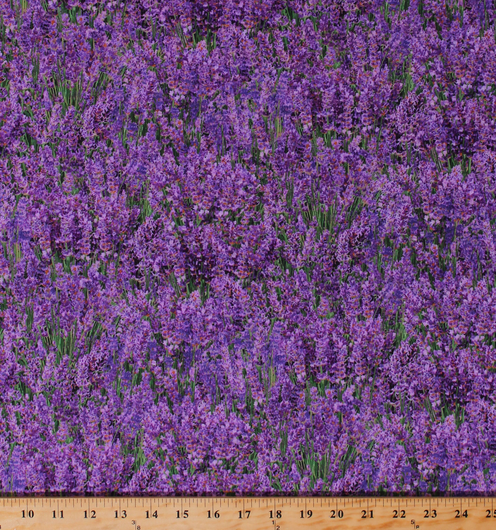 Cotton Lavender Flowers Flower Floral Landscape Medley Purple
