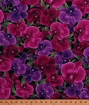 Cotton Orchids Exotic Flowers Floral Blossoms Blooms Gardens Gardening Phalaenopsis Pink Purple Cotton Fabric Print by the Yard (ORCHID-C3205)