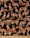 Cotton Golden Retrievers Dogs Puppy Puppies Pets Animals Black Cotton Fabric Print by the Yard (gm-c4892-golden)