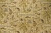 Tommy Bahama® Island Song Fabric by the Yard - Rattan
