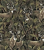 Deer in the Forest (Bucks Doe) Animal Print Fleece Fabric by the Yard a24524b