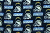 Fleece San Diego Chargers NFL Football Fleece Fabric Print by the yard (s6273df)