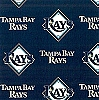 Fleece (not for masks) Tampa Bay Rays MLB Pro Baseball Team Fleece Fabric Print by the yard