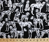 Cotton Dalmatians Dogs Puppies Puppy Pets Animals Black Cotton Fabric Print by the Yard (gm-c3047)