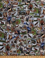 Cotton Horses Photographs Photos Postcards Horse Riding Equestrian Band of Horses Cotton Fabric Print by the Yard (AKO-14092-195BRIGHT)