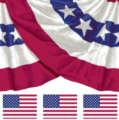 Old Glory Bunting Large Limited Edition 22 Quot Wide Cotton