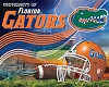 University of Florida® Gators® Stadium College Fleece Fabric Panel