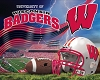 University of Wisconsin® Badgers® Stadium College Fleece Fabric Panel