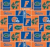 University of Florida™ Gators™ College Fleece Fabric Print