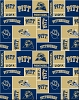 University of Pittsburgh™ Panthers™ Boxes College Fleece Fabric Print