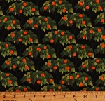 Cotton Orange Trees Oranges Fruit Citrus Food Plants Garden on Black Cotton Fabric Print by the Yard (06466-12)