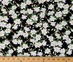 Cotton Magnolias Flowers Florals White on Black Magnolia Mania Cotton Fabric Print by the Yard (9845-99)