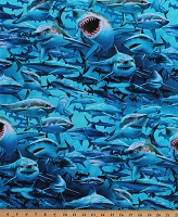 Cotton Shark Nation Sharks Fish Aquatic Ocean Animals Cotton Fabric Print by the Yard (JQ-00229C)