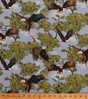 Cotton Eagle Eagles Bird of Prey Birds Wildlife Nature Born Free Cotton Fabric Print by the Yard (112-31991)