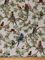 Cotton Parrots Lovebirds Macaws Birds Bird Jungle Animals Wildlife Nature Born Free Cotton Fabric Print by the Yard (112-31961)
