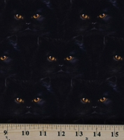 Cotton Black Cats Whiskers & Tails Kitty Kitties Kittens Orange Eyes on Black Cotton Fabric Print by the Yard (AYVD-19562-2BLACK)