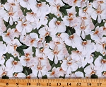 Cotton Orchids in Bloom White Orchid Flowers Floral Springtime Gardening Plants Green Cotton Fabric Print by the Yard (DP23871-74GREEN&WHITE)