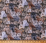 Cotton Owls Packed Birds Animals Multi-Color Cotton Fabric Print by the Yard (BIRD-C7947-MULTI)