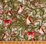 Cotton Birds Pine Trees Evergreens Holly Hollies Berries Bows Winter Forest Pine with Birds Multicolor Cotton Fabric Print by the Yard (16647-WHT-CTN-D)