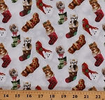 Cotton Cats Kittens Fireside Kitties in Stockings Christmas Cute Cotton Fabric Print by the Yard (9604-40)
