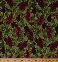 Cotton Grapes Clusters Bunches Leaves Fruit Vineyard Winemaking Rhone Valley in Wine Purple Green Cotton Fabric Print by the Yard (Y2511-48WINE)