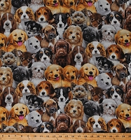 Cotton Puppies Puppy Dogs Breeds Beagles Golden Retrievers Pugs Basset Hounds Adorable Pets Animals Cotton Fabric Print by the Yard (3800MULTI)