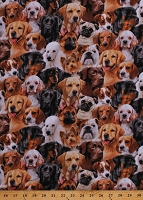 Cotton Dogs Allover Dog Breeds Pugs German Shepherds Golden Retrievers Poodles Animals Pets Canine Cotton Fabric Print by the Yard (1312BLACK)